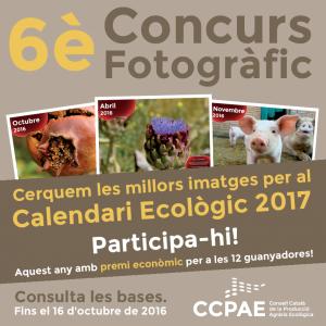 concurs_fotos_CCPAE